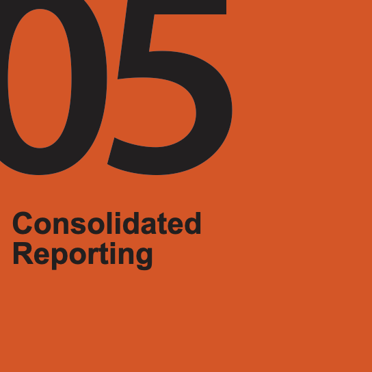 Consolidated Reporting
